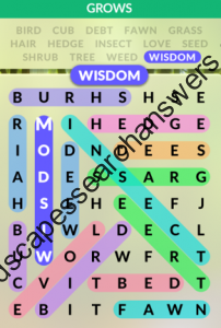 Wordscapes Search Level 63 Answers Wordscapes Search Answers
